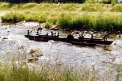 Boot Dreisam